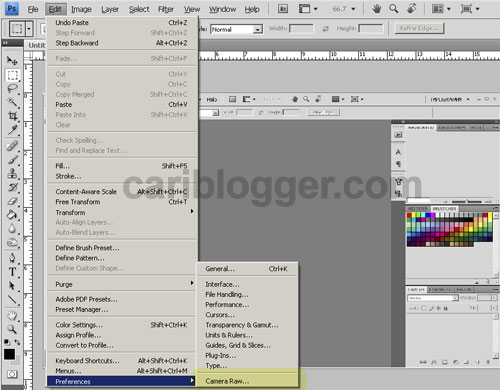 How to Open JPEG File Automatically in Photoshop Camera Raw CS4 - Step 1