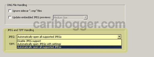 How to Open JPEG File Automatically in Photoshop Camera Raw CS4 - Step 3