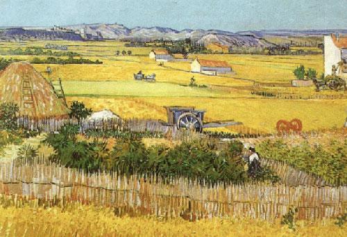 Antique Oil Paintings - Vincent Van Gogh