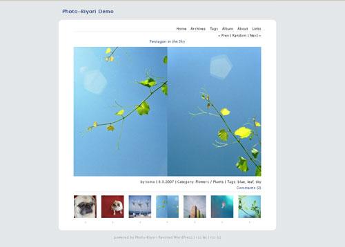 Most Beautiful WordPress Theme for Photographers - Photo-Biyori