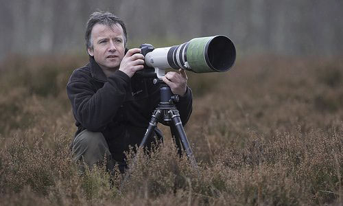 Wildlife Photography Tips - Use Beanbag or Tripod as Stabilizer