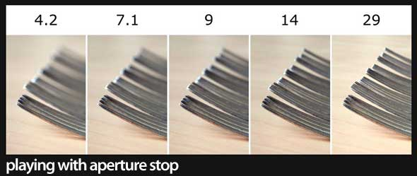 Mastering Your Camera Aperture - Depth of Field