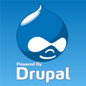 (Freebies) Download 15 Free Drupal Business Theme