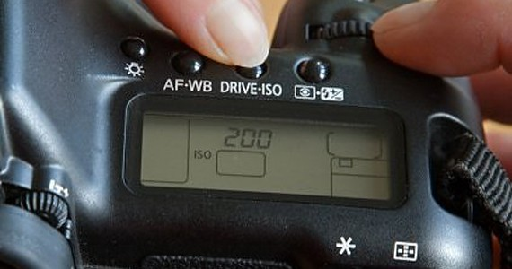 Camera ISO button