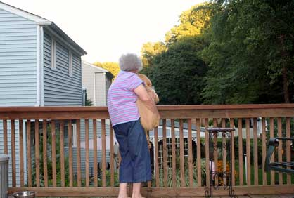 Home Improvement Projects that Keep Aging Parents Safe