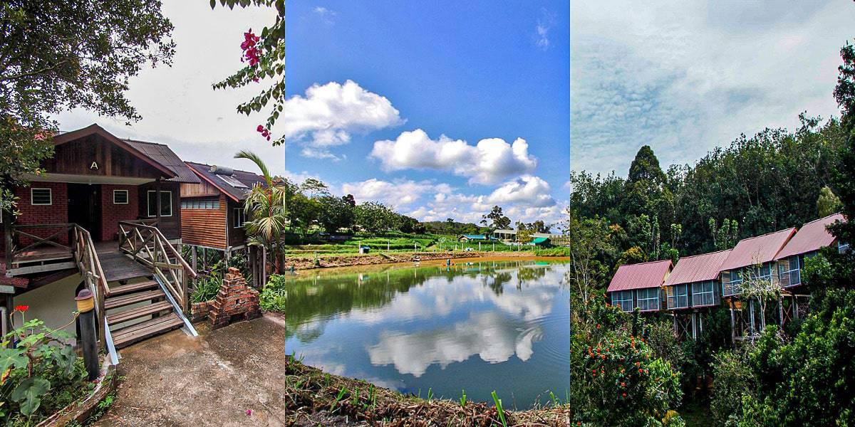 Tempat Menarik di Jelebu - Titi Eco Farm