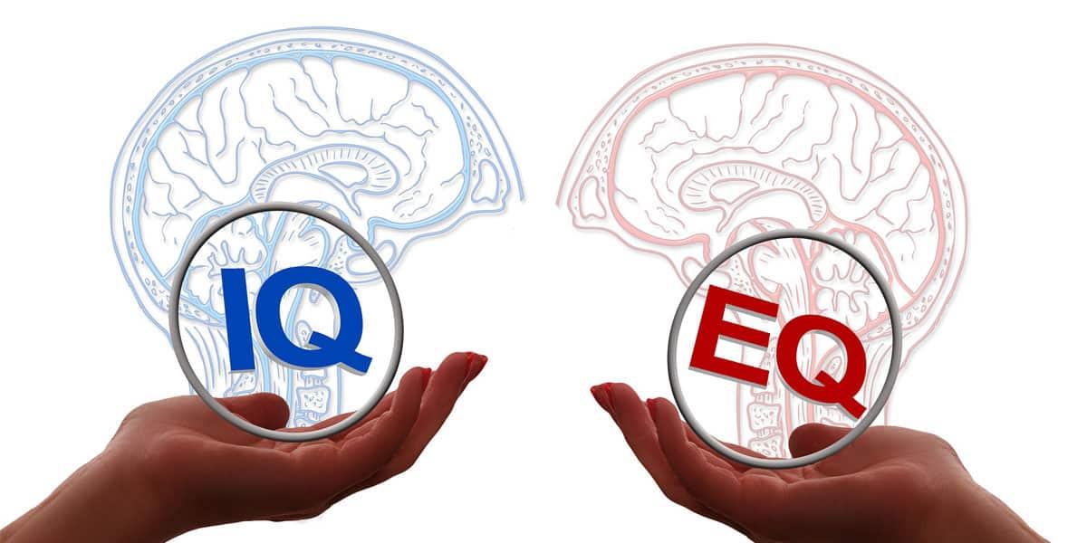 Kecerdasan IQ dan EQ
