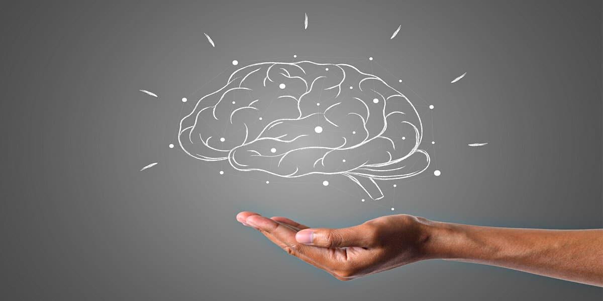 Khasiat Kurma Menurut Sains - Kesihatan Otak