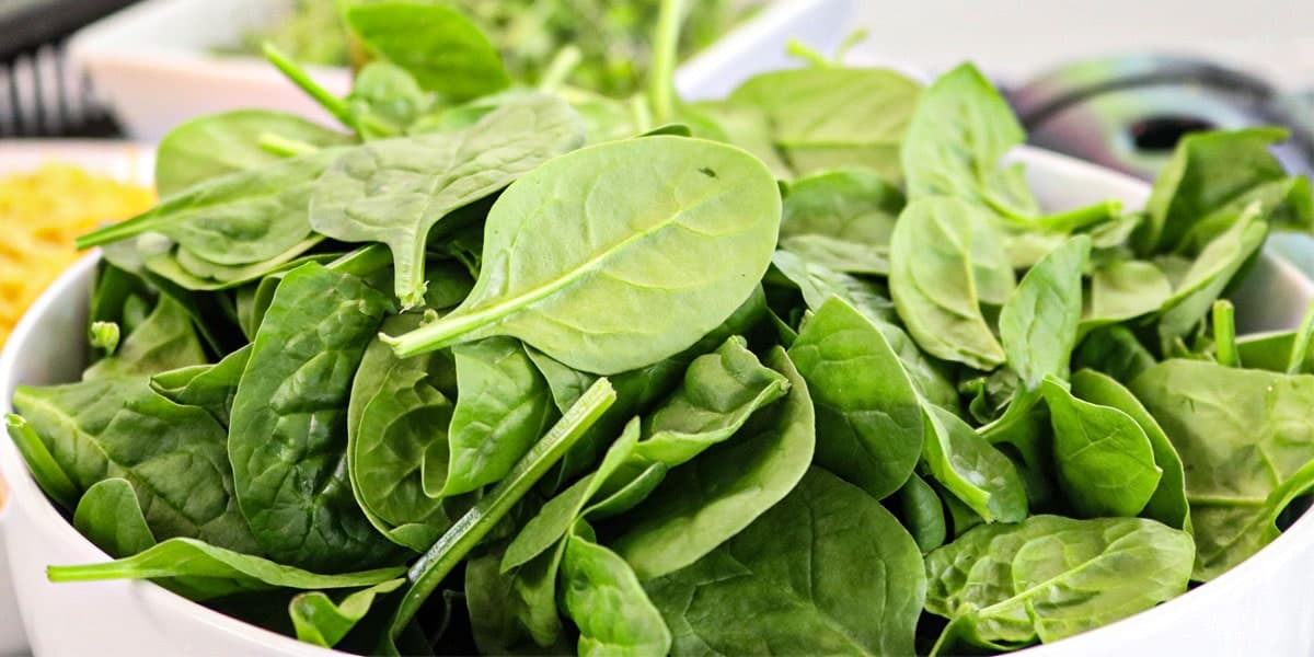 Makanan Berkhasiat untuk Sistem Imun - Bayam